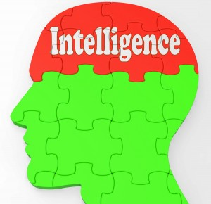 Intelligence Brain Showing Knowledge Information And Education