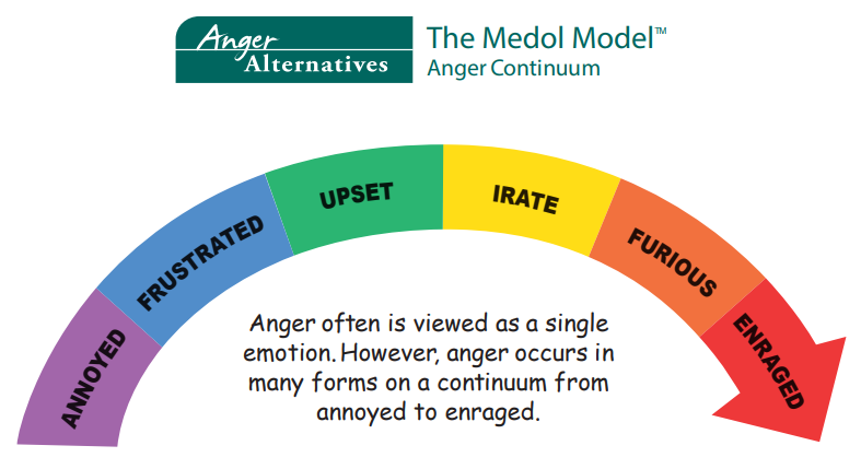 definition essay on anger is a healthy emotion Anger is a very powerful emotion that can stem from feelings of frustration, hurt, annoyance, or disappointment it is a normal human emotion that can range from slight irritation to strong rage.
